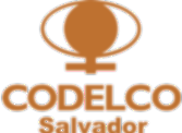 Codelco-Salvador1